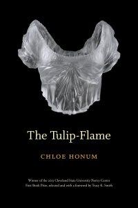 tulip flame